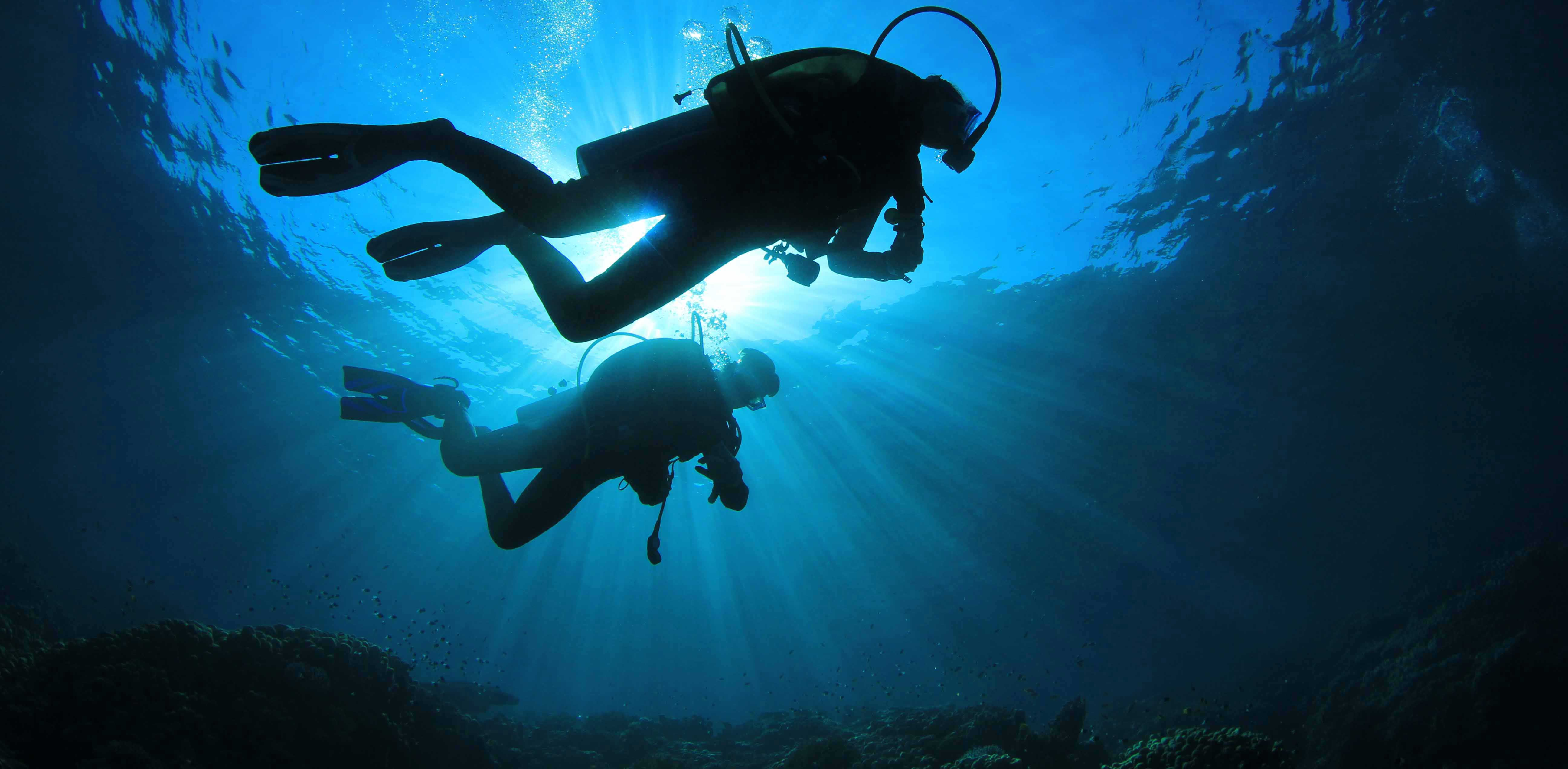 Divers-silhouette-11